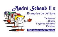 partner_schaub